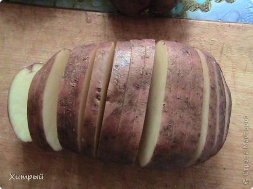 Картошка-Гармошка фото 2