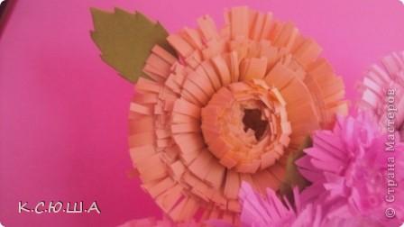 Здравствуйте дорогие жители Страны Мастеров! Мне выпало задание «День астр». Я очень рада, что он мне достался, ведь это мои самые любимые цветы!  Астра это королева осеннего цветника, она достаточно неприхотлива и привлекает своим продолжительным цветением. Ее осенние краски не могут оставить ни кого равнодушным. Величайшее разнообразие цветов и оттенков, форм и размеров у этих замечательных цветов.  Вот такие астрочки у меня получились!  А крупные яркие астры  В осенней сухой тишине  Так пестры и разномастны,  Что видимы и при луне. фото 3