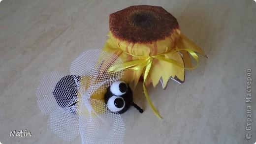 """Мои девочки очень любят """"медовую"""" тему.  У нас есть зайки-пчелки, медовые рыбки и другие """"сладкие"""" игрушки. Есть даже чайник Пчёлка. А еще есть """"медовые"""" украшения.  Но к этому празднику нам захотелось сделать именно ПЧЁЛКУ, виновницу и создательницу такого волшебства, как МЁД.  фото 1"""