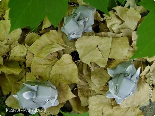 Хорошо, что мама с осени заготовила коробку берёзовых листьев на всякий случай. Мало ли, что нам в голову прийдёт.... фото 3