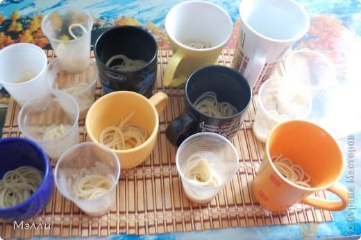 Топиарий  из вареных макарон. Эта поделка - ода естественному вскармливанию детей. Почему? Да потому что именно макароны (наряду с куриным бульоном и печёным картофелем) были для меня максимально лактогенным продуктом. Так как кормящим мама необходимо выпивать не менее 2 литров жидкости в день, то я приобрела большую красную чашку: 5 чаепитий из нее -  и норма выполнена:)). Бадьян (анис) уменьшает проблемы с животиком у детей, а божья коровка яркая и весёлая, как детвора!  фото 5