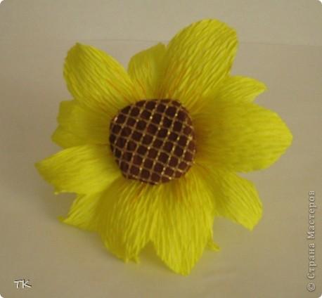 Е. Неменко  Под солнцем подсолнух  Сегодня расцвел,  Собрал на цветок свой  Букашек и пчёл.  Гудит и жужжит  Неспокойный народ,  Как будто подсолнух  Сам песню поёт.  фото 5