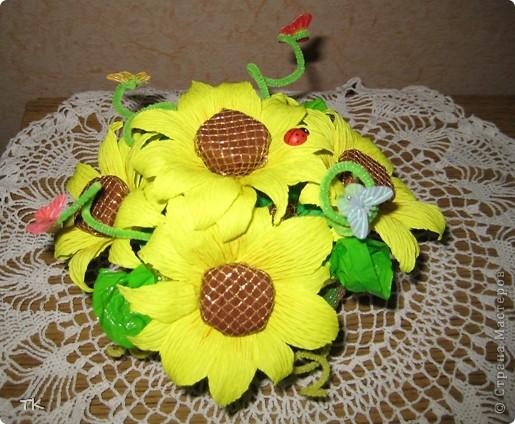 Е. Неменко  Под солнцем подсолнух  Сегодня расцвел,  Собрал на цветок свой  Букашек и пчёл.  Гудит и жужжит  Неспокойный народ,  Как будто подсолнух  Сам песню поёт.  фото 2