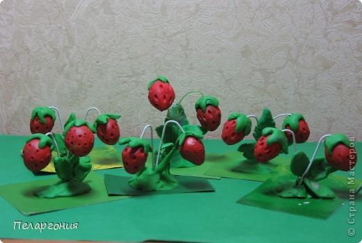 День ягодного изобилия фото 3