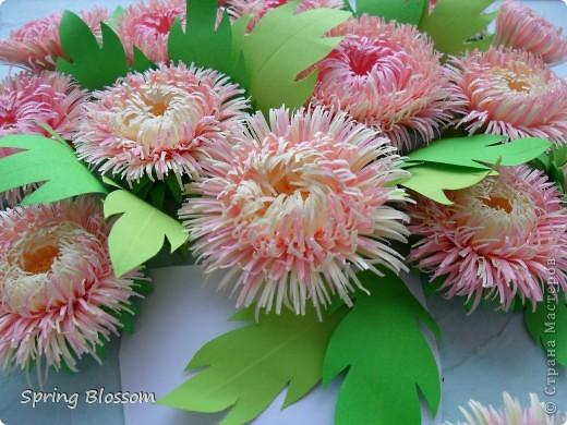 Цветы из гофрированной бумаги своими руками астры