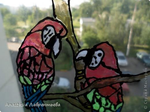 """Цветные витражи в кафе курящем – Иллюзия счастливого мирка. А что за ними в мире настоящем? Унылая осенняя тоска… Цветные витражи – обман красивый, Прекрасный сад, где нету перемен. Но привыкает глаз к цветному диву. И вновь туда, где множество проблем. Цветные витражи… А что за ними? Дождь перестал. И день вошёл в кураж. На небе радуга повисла дивно – Природы щедрой радостный витраж.  Литературно-художественный блог """"Яника""""  фото 1"""
