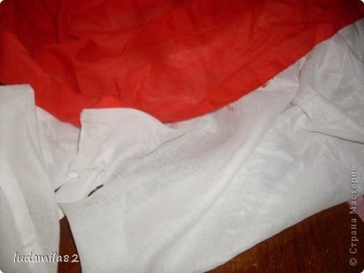Канадский флаг -самый узнаваемый мире. фото 2