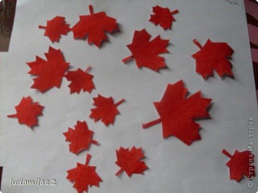 Канадский флаг -самый узнаваемый мире. фото 3