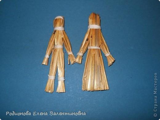 Соломка- сухие стебли - замечательный материал для работы. фото 1