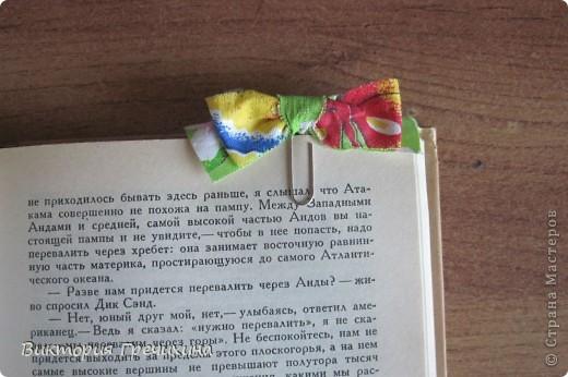 Очень повезло мне с праздником! Дракоша выдал мне 3 даты, среди которых я нашла свой день рождения! Я даже и не знала, что в этот день 2 интересных праздника - день скрепок и день информатики!  Вот такое вот оформление скрепки как закладки я увидела на сайте: http://nv-studio.com.ua/blog/master-klassi/zakladki-dlya-knig-svoimi-rukami.html фото 1