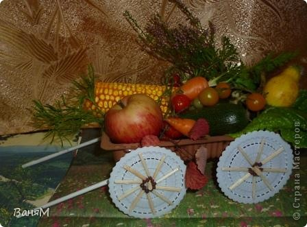 Телега осень-припасиха. фото 1