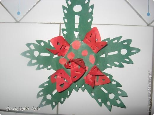 Пуансеттия, известная многим как Рождественская звезда, - одно из самых популярных рождественских растений. Знаменитый шикарный вид придают пуансеттии прицветники - крупные контрастные листья на самом верху побегов текущего года. Эти листья бывают ярко-красными, розовыми, жёлтыми, кремовыми и даже двуцветными, пятнистыми; держатся они на растении только несколько недель. Сами цветки пуансеттии совсем невзрачные - жёлто-зелёные, небольшого размера.А на моей фотке ещё и мой макетный нож,так как с фотографиями этапов работы возникла проблема то он моё единственное поттверждение подлинности работы  фото 2