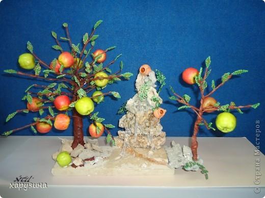 Именно так растут вкуснейшие яблоки на Голанских высотах фото 7