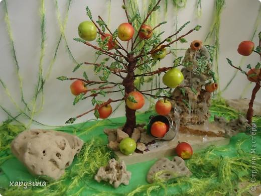 Именно так растут вкуснейшие яблоки на Голанских высотах фото 2