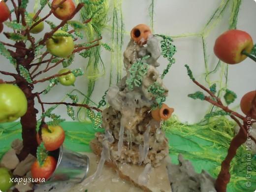 Именно так растут вкуснейшие яблоки на Голанских высотах фото 3