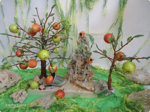Именно так растут вкуснейшие яблоки на Голанских высотах фото 4