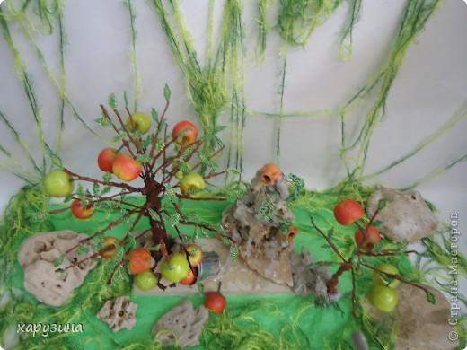 Именно так растут вкуснейшие яблоки на Голанских высотах фото 6