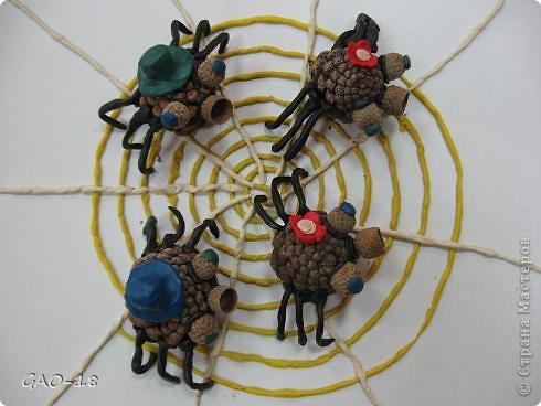 Поделки паук из природного материала