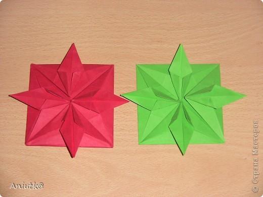 24 декабря не напрасно был выбран  днем Пуансеттии, ведь это Сочельник Рождества на Западе. А как же обойтись без этого прекрасного цветка? фото 6