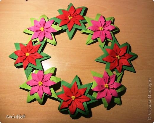 24 декабря не напрасно был выбран  днем Пуансеттии, ведь это Сочельник Рождества на Западе. А как же обойтись без этого прекрасного цветка? фото 1