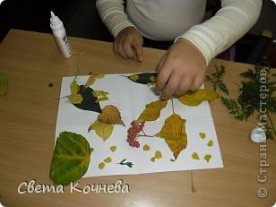 Какие красивые листья осенью! Их них можно делать разные аппликации. фото 2
