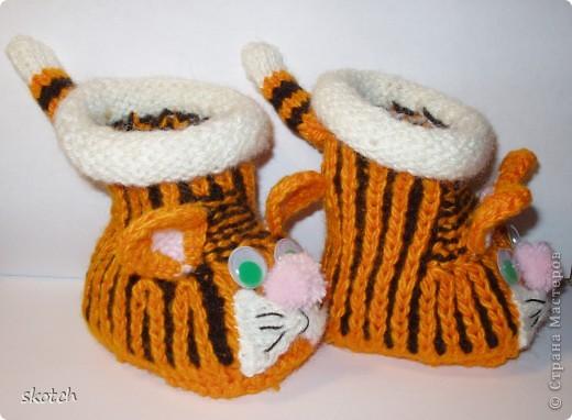 Целых два амурских тигренка у меня связалось )) фото 5