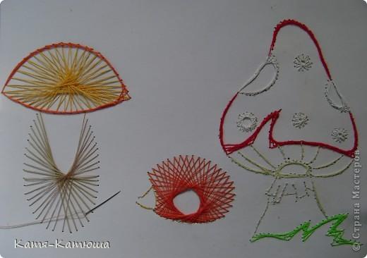 Какой гриб выбрать вкусный или красивый? фото 3