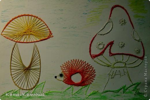 Какой гриб выбрать вкусный или красивый? фото 1