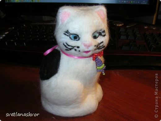 домашнее животное кошка Муся фото 1