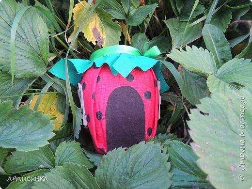 Хоть и не сезон уже давно, но появилась у меня в огороде клубничка. фото 1