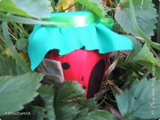 Хоть и не сезон уже давно, но появилась у меня в огороде клубничка. фото 2