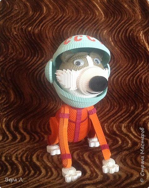 Я - собака-космонавт Стрелка. фото 1