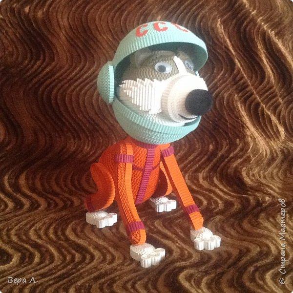 Я - собака-космонавт Стрелка. фото 5