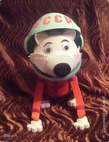 Я - собака-космонавт Белка. фото 1