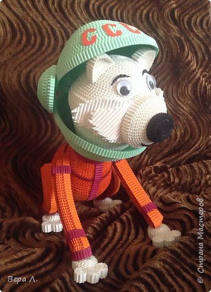 Я - собака-космонавт Белка. фото 4