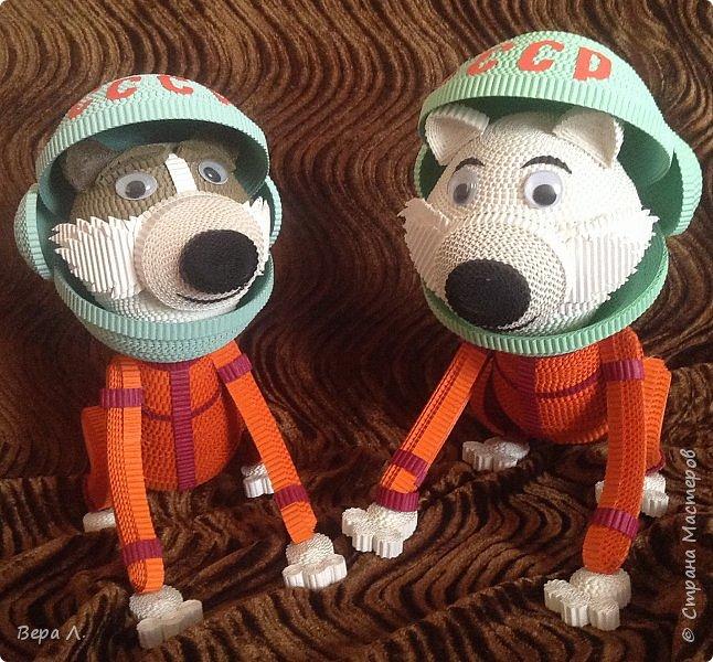 Я - собака-космонавт Белка. фото 5