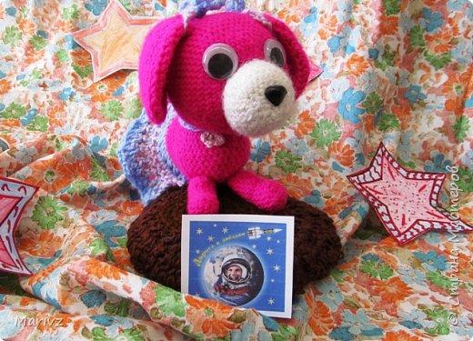 """Добрый день.Собаку зовут Марсианка, она прилетела на Марс в рамках международного космического проекта """"Звёздный корабль 2030"""". Идея проекта в том, чтобы заселить Марс жителями и продолжить освоение космического пространства. фото 1"""