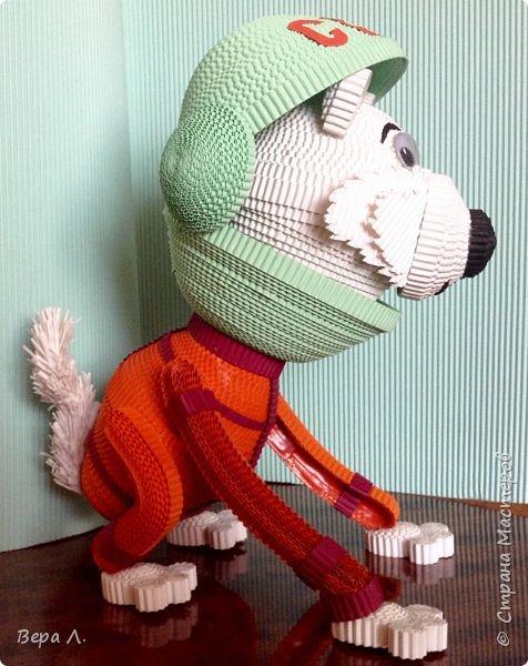Я - собака-космонавт Белка. фото 6