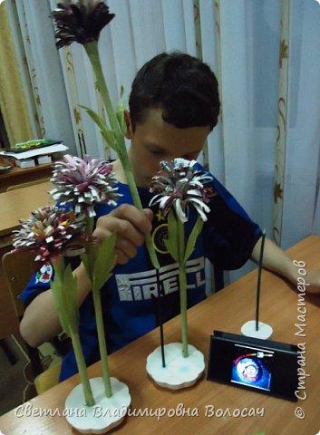 Растения планеты Элизиум. фото 3