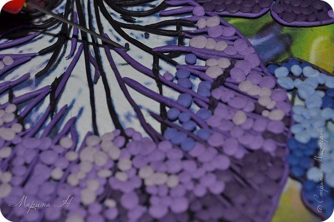 Редкий и уязвимый на территории края вид с обширным ареалом. Многолетнее растение 50-80 см выстой. Корневище с бурыми остатками листьев. Прикорневые листья линейные, длинные. Цветы по 2-3 на верхушках стеблей. Околоцветник темно-синий, с короткой трубкой до 5 см длины, наружные доли отогнуты книзу, в средней части бледно-синий с темными сине-фиолетовыми жилками. Внутренние доли околоцветника более узкие. Коробочка до 2,5 см без носика. Произрастают на лугах низкой и средней поймы. Факторы, влияющие на исчезновение популяции. Хозяйственная деятельность человека, сборы на букеты, весенние палы. Описание взято из Красной книги Алтайского края. фото 9