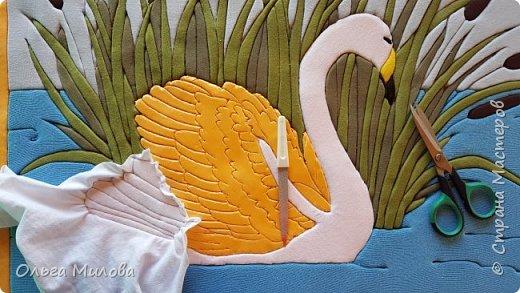 Лебедь-кликун. Один из трех видов лебедей, распространенных в фауне России от западных границ до низовьев Анадыря и Сахалина. фото 16