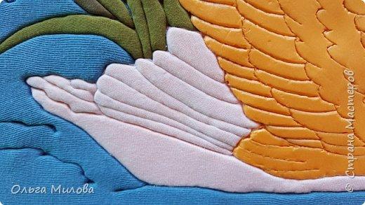 Лебедь-кликун. Один из трех видов лебедей, распространенных в фауне России от западных границ до низовьев Анадыря и Сахалина. фото 17