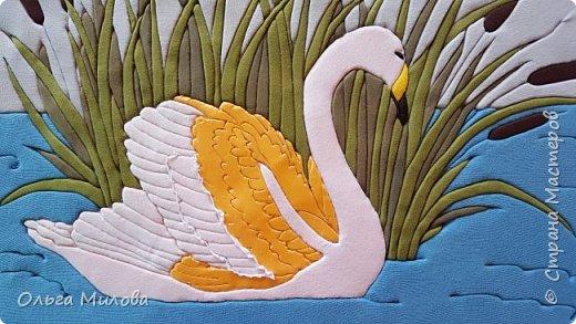 Лебедь-кликун. Один из трех видов лебедей, распространенных в фауне России от западных границ до низовьев Анадыря и Сахалина. фото 21