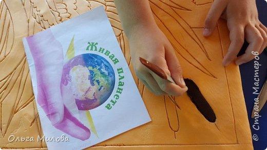 Лебедь-кликун. Один из трех видов лебедей, распространенных в фауне России от западных границ до низовьев Анадыря и Сахалина. фото 4