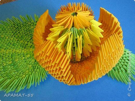 """Здравствуйте.  Для работы выбрала тему """"Царство растений"""" и сделала водяной цветок """"Кубышка желтая"""" Кубышка желтая распространена во многих регионах России. Места ее произрастание – заливы, озера, пруды, речные тихие мелководья. Корневище растения очень ветвистое, от него расползаются десятки корней по дну водоема. Диаметр зависит от возраста кубышки – корень взрослого растения может достигать 10 сантиметров в толщину. Стебель кубышки желтой практически полностью скрыт под водой, на поверхности остается лишь небольшая часть с цветком. Он упругий и длинный, порой достигает 2-3 метров.  Мясистые крупные листья лежат на воде. Они ярко-зеленого цвета, блестят на солнце. Цветок кубышки желтый. Его «лепестки» являются чашелистиками. Они окружают цветок и защищают его. В плохую погоду и в ночное время они закрыты. Большая часть цветка – тычинки с пыльниками. В центре расположена многозвеньевая завязь, в которой образуется плод растения. Период цветение – с мая по август. Плод напоминает кувшин, в котором спрятаны семена.   фото 7"""