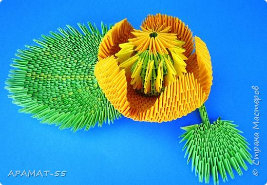 """Здравствуйте.  Для работы выбрала тему """"Царство растений"""" и сделала водяной цветок """"Кубышка желтая"""" Кубышка желтая распространена во многих регионах России. Места ее произрастание – заливы, озера, пруды, речные тихие мелководья. Корневище растения очень ветвистое, от него расползаются десятки корней по дну водоема. Диаметр зависит от возраста кубышки – корень взрослого растения может достигать 10 сантиметров в толщину. Стебель кубышки желтой практически полностью скрыт под водой, на поверхности остается лишь небольшая часть с цветком. Он упругий и длинный, порой достигает 2-3 метров.  Мясистые крупные листья лежат на воде. Они ярко-зеленого цвета, блестят на солнце. Цветок кубышки желтый. Его «лепестки» являются чашелистиками. Они окружают цветок и защищают его. В плохую погоду и в ночное время они закрыты. Большая часть цветка – тычинки с пыльниками. В центре расположена многозвеньевая завязь, в которой образуется плод растения. Период цветение – с мая по август. Плод напоминает кувшин, в котором спрятаны семена.   фото 10"""