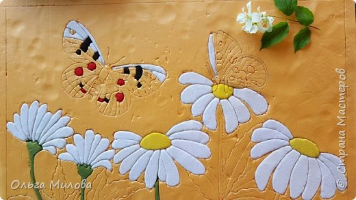 Аполлон обыкновенный – Один из наиболее крупных видов чешуекрылых фауны Алтая. Длина переднего крыла 30–40 (до 58) мм, фон крыльев белый у самцов и сероватый (за счет напыления темных чешуек) у самок; краевая зона переднего крыла полупрозрачная, на переднем крыле в срединной части крыла несколько округлых чёрных пятен. На заднем крыле с обеих сторон два красных или желтовато-оранжевых округлых дискальных пятна, окаймлённых чёрным,иногда центрированных белым ядрышком; снизу задних крыльев имеются прикорневые красные пятна с белыми ядрышками, края крыльев без отчетливых чёрных пятен у концов жилок, передние крылья, как правило, не несут красных пятен, выраженным половым диморфизмом. Самки гораздо темнее за счет как напыления фона, так и сильного развития темных элементов рисунка, часто крупнее самцов. Аполлон требует охраны, он внесен в Красную книгу республики Алтай. фото 11