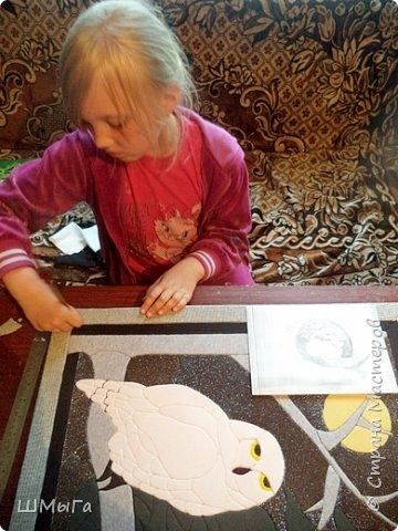 Долго обсуждали и выбирали объект воплощения.  Зарину привлекла полярная сова с ее белоснежным оперением и ярко-желтыми глазами. Панно выполнено в технике кинусайга. фото 12