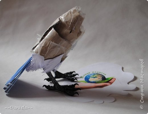 Небольшая простенькая птичка на конкурс:) фото 3