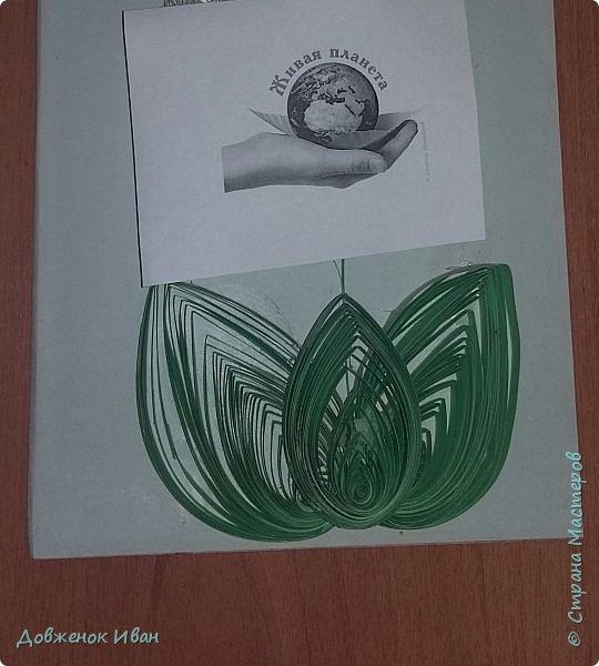 """Многолетнее травянистое растение высотой 15-20 см. От корневища отходят 2, реже 1-3 листа длиной около 20 см и тонкая цветочная стрелка, почти равная по длине листьям, окруженная у основания пленчатыми листочками. Сверху цветочной стрелки однобокой повислой кистью собраны приятно пахнущие белые цветки (5-20 штук), похожие на маленькие шарообразные колокольчики. Плод - красная ягода. Все растение ядовито. Цветет в апреле - июне, плодоносит в августе - сентябре. Ландыш известен с древности как ценное лекарственное растение.  Научное название майского ландыша происходит от греческих слов """"конваллис"""" - долина, """"лирион"""" - лилия и """"майялис"""" - майская, т. е. """"лилия долин, цветущая в мае"""".  Ландыш - любимый цветок многих народов, особенно французов, где в первое, майское воскресенье отмечают праздник ландышей.  Об этом растении сложены легенды. Одна из них рассказывает, как Ландыш влюбился в Весну, а когда она ушла, он горько плакал, и кровь выступила у него из сердца, и окрасила слезы - красные плоды, которые, появляются на стебле после цветения. (http://www.zooclub.ru/flora/lilii/11.shtml)  фото 5"""